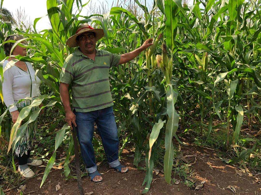 Gvatemala 3